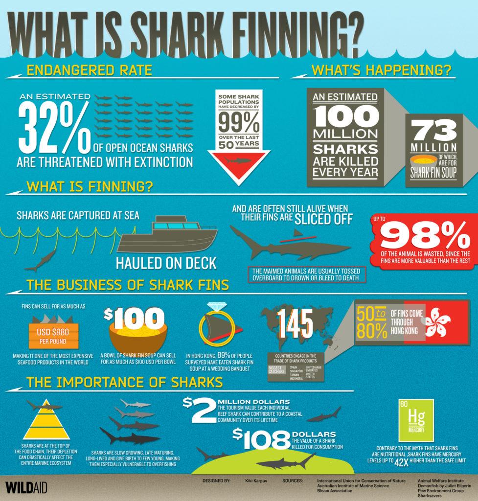 shark_bkgrd_ld